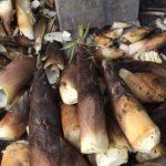 原材料の竹の子は国産です